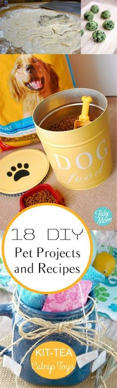 18 DIY Pet Projects and Recipes