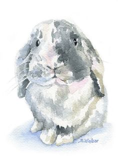 Little Mini Lop is a Giclée Print of my original watercolor painting. The paper measures 5x7 and the image is portrait (vertical) orientation.  Printed on fine art paper using archival pigment inks. This high quality cotton paper makes it hard to tell the original painting from the print! This quality printing allows over 100 years of vivid color in a typical home display.  Prints are sent in cellophane sleeve with cardboard in a sturdy mailer to protect it while shipping.  ***Find this…