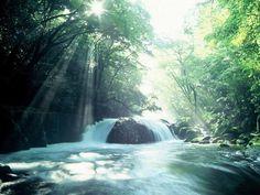 #九州 #熊本 #Nature 天然の広葉樹に囲まれた「菊池渓谷」(熊本県)は、美しい森を縫って流れる水が、さまざまな瀬、渕、滝をつくり、変化に富んだ景観を楽しませてくれます。夏の平均水温は13℃と冷たく、心地いい風がわたる水辺の避暑地です。