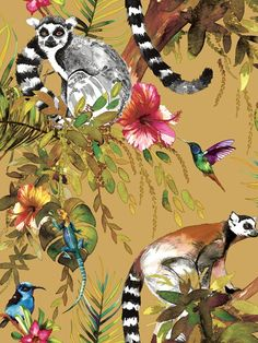 This unique Lemur Wallpaper features a collection of detailed illustrated style lemurs with colourful hummingbirds and tropical flowers in beautiful vibrant colours on a soft yellow ochre background. The design is printed on to luxury heavyweight paper to ensure durability and a quality finish. Easy to apply, this wallpaper will look great when used to decorate a whole room or to create a feature wall. Lemurs, Tropical Wallpaper, Vibrant Colors, Colours, Paper Wallpaper, High Quality Wallpapers, Tropical Flowers, Hummingbirds, Exotic Pets
