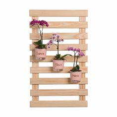 Treliça de madeira 100cm x 60cm  - Plantei Garden Center