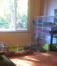 If you are searching for a furry companion which is not only adorable, but easy to keep, then look no further than a family pet bunny. Bunny Cages, Rabbit Cages, House Rabbit, Bunny Rabbits, Bunny Bunny, Indoor Rabbit Cage, Rabbit Pen, Pet Rabbit, Bunny Room