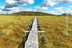 Finland, Villa, Travel, Google, Viajes, Destinations, Traveling, Trips, Fork