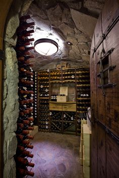 Amazing wine cellar ~ love the door!