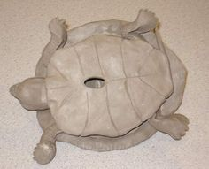 clay turtle bottom view