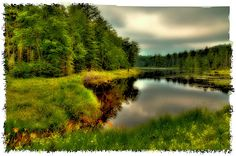 #ADK #Adirondacks #OldForge - The Calm Of Fly Pond