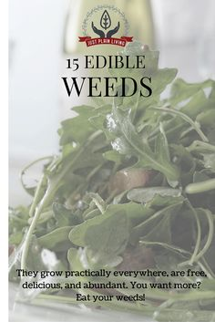 Before you kill all the weeds - many of them are even more nutritious than the vegetables in your garden. And just as tasty!