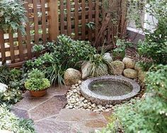 Small garden with paving stones and water feature