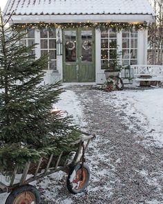 """6,338 gilla-markeringar, 54 kommentarer - Vibeke Sæther Svenningsen (@vibekedesign) på Instagram: """"Det er en deilig desember dag og her har det vært varierte aktiviteter. Nå venter julemusikk og…"""""""