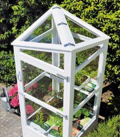 Om du under sommaren vill plocka tomater och andra grönsaker, och inte har plats för ett växthus, så har vi lösningen: ett miniväxthus på bara 0,6 m2.