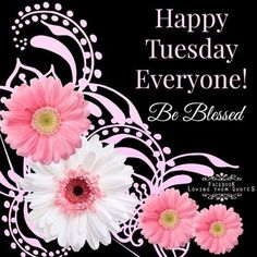 Happy Tuesday Everyone Pictures, Photos, and Images for Facebook, Tumblr, Pinterest, and Twitter