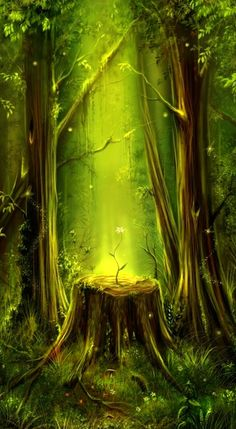 fairytales forest
