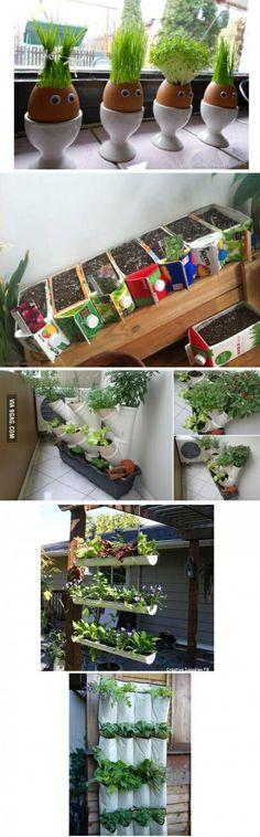 Ideas de reciclaje con cáscaras de huevos, cajas tetra pak, vasos plumavit
