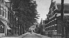 Rechts van de Brinklaan staat café-restaurant 'Delta' op de hoek met de Veerstraat, omstreeks 1910.