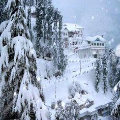 http://www.visiit.com/india-tours/shimla-tour-packages.html  shimla tour packages