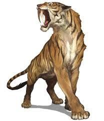 tigre dentes de sabre v.s leão - Pesquisa Google