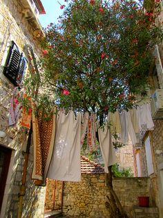 Dalmatia  Split http://www.adriaticaccommodation.net/search/croatia/split-dalmatia