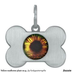 Yellow sunflower plant on green watery background pet ID tags