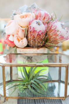 The Dreamcatcher Session from Katie McGihon Protea Wedding, Floral Wedding, Wedding Bouquets, Wedding Flowers, Protea Bouquet, Flower Centerpieces, Protea Centerpiece, Centrepieces, Event Design