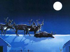 Rudolphs tired