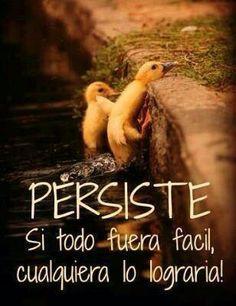 Perseverancia para convertir nuestros sueños en metas y nuestras metas en realidad.