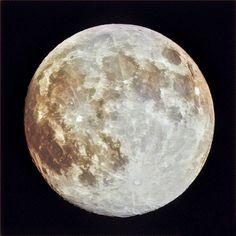 Oggi la  luna piena coincide con la minore distanza tra terra e luna 🌙 Bisogna approfittarne e fare delle belle foto #cool #dark #fun #insta_sleep #lastnight #latenight #luna #lunar #moon #myfav #natur #night #nightsky #nighttime #nite #noche #nuture #photography #primeshots #tagsta #tagsta_nature #themoon #thestars #twlightscapes #photoblog #giacomaleopardart #supermoon