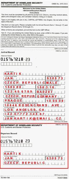 Formuláře v letadle do USA - neimigrační formulář