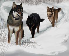 Part of the wild by Kique7.deviantart.com on @deviantART