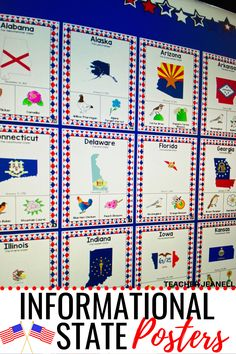 50 States, United States, Bulletin Board Display, Information Poster, State Birds, Graphic Organizers, Delaware, Third Grade, Social Studies
