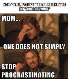Professional Procrastinator #Faramir #Procrastination #Funny #meme #LordOfTheRings