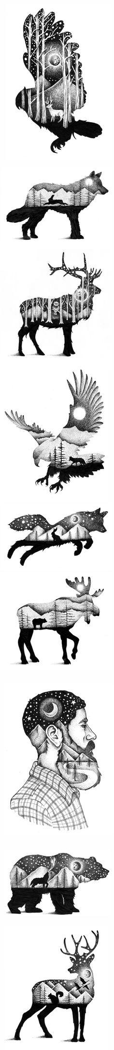 Mistura entre a silhueta do animal e a paisagem que o rodeia
