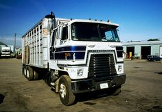 Straight bull truck