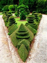 Topiary Trees Are A Beautiful Addition To Your Landscape Design Topiary Garden, Topiary Trees, Garden Art, Amazing Gardens, Beautiful Gardens, Beautiful Flowers, Formal Gardens, Outdoor Gardens, Thuja