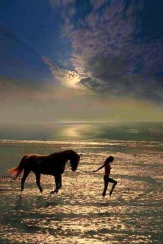 To ride a horse is to ride the sky.  ~Author Unknown