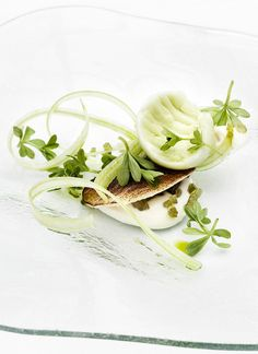 MIELCKE & HURTIGKARL - WOODRUFF & CELERY by Mielcke_Hurtigkarl, via Flickr