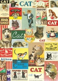 Vintage Cat Gift Wrap
