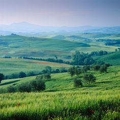 Rolling hills in rural landscape, David Henderson