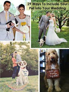 29 Ways To Include Your Pet Into Your Wedding http://weddingideasbyyou.com/2014/03/13/29-ways-include-pet-wedding/ Follow Us on Pinterest --> http://www.pinterest.com/weddingideasbyu/