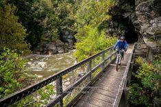 Charming Creek Walkway – A Ride full of Charm South Island, Walkway, Vermont, Mtb, Railroad Tracks, Trail, Bucket, Charmed, Sidewalk
