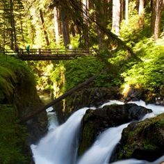 It's a beautiful hike to Bagby Hot Springs in Mt Hood National Forest, Oregon. (Originally pinned by Laura Roberts.) www.mthoodterritory.com