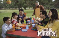 Hoy es Día Nacional del Picnic, y es la excusa perfecta para salir de casa, respirar aire fresco, convivir con la familia y consentirlos con una Cazuela cremosa de pollo y arroz.