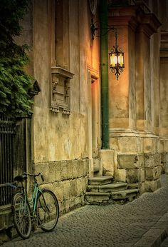 Lviv Ukraine by Taras Dzedzey