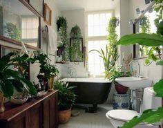 green plants in the bathroom...Ahhhhhh