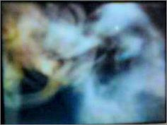 Ghosts & Spirits Ghost Pictures, Apparition Pictures, Angel & Ghost Stories