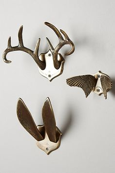 (wings) Airen Grove Hook Rack #anthropologie