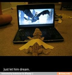 little lizard how to train your dragon 1