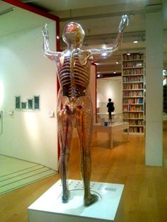 It's free to get into the Wellcome Collection in London | Europe a la Carte Travel Blog: http://www.europealacarte.co.uk/blog/2012/12/31/review-tune-hotel-edinburgh-haymarket/