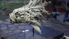 Fish Driftwood Sculptures & Art - Tony Fredriksson Open Sky Woodart in White River, Mpumalanga, Fish Gallery Sculptures by Tony Fredriksson Driftwood Sculpture, Sculpture Art, Sculptures, Fish Gallery, Driftwood Ideas, Carving, Sky, Statue, Heaven