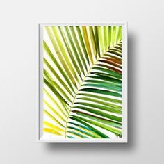 Palm leaf Watercolor painting Tropical coconut by Sweepinggirl
