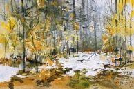 Humid Woods Vermont, Pastel, Sculpture, Watercolors, Artist, Woods, Prints, Painting, Outdoor